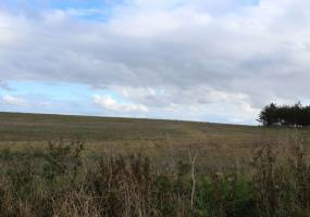 Craigend, Cruden Bay, Aberdeenshire, ,Plot,For Sale,Plot Adjacent To,Craigend,1019